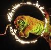 Цирки в Клязьме
